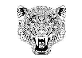 Tigre Pauline Coloriages Difficiles Pour Adultes Justcolor
