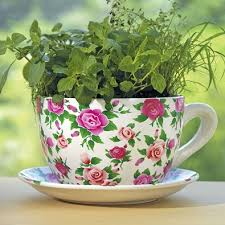 Large Teacup Planter Giant Teacup Planter Uk Related Keywords &  Suggestions - Giant
