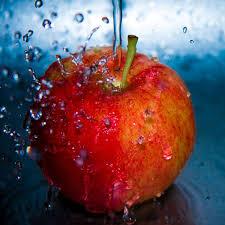 red apple fruit wallpaper. red apples #1 apple fruit wallpaper