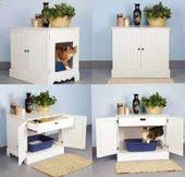 cat litter box idea bookcase climber litter box