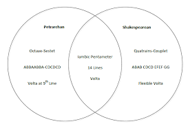 Example Of Venn Diagram In English What Are The Differences And Similarities Between The