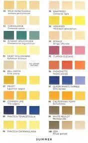 Summer Pollen Color Chart Vintage Colour Palette Color