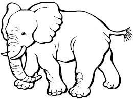 Coloring Pages Of Cute Baby Animals Animals Coloring Pages Cute Baby
