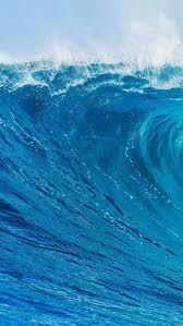 Jellyfish, orange, blue background, underwater, aquarium, 5k. 25 Awesome Iphone 6 Wallpapers Waves Wallpaper Iphone Iphone 6 Wallpaper Waves Wallpaper