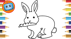 how to draw a rabbit colouring book simple drawing game animation