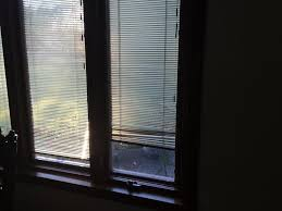 Almond Color Replacement WindowsReplacement Windows With Blinds