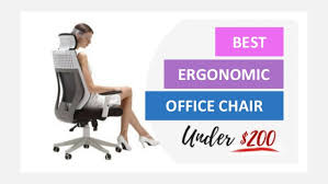 ergonomic office chairs. BEST ERGONOMIC OFFICE CHAIR Ergonomic Office Chairs D