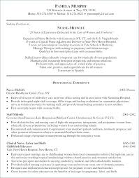 Resume For It Job A Professional Resume Lovely Example Resume ...
