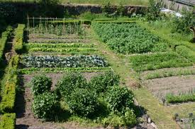 Kitchen Garden In India Cormiston Farm Two Acres Of Grounds Around The 4 Star Bb At