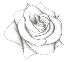 Drawings Of Roses Barca Fontanacountryinn Com