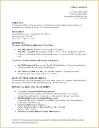 Resume Latex Template Academic Examples Example And Objective Cv