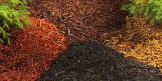 best mulch for garden. Perfect For Best Mulches For Gardening In Best Mulch For Garden N