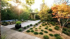 plant a minimalist garden