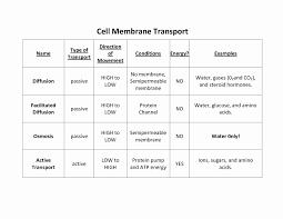 Venn Diagram Of Diffusion Osmosis And Active Transport Science 8 Diffusion And Osmosis Worksheet Answers Elegant