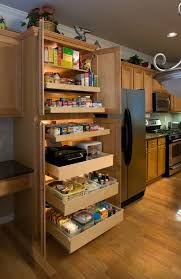 Kitchen Cabinet Sliding Shelf How To Build A Sliding Pantry Cabinet Best Home Furniture Decoration