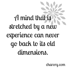 Experience Quotes Classy 48 Famous Quotes About Experience