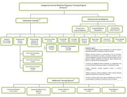 Information Technology Career Path Flow Chart Structure Of Internal Medicine Residency Training Acp