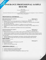 Gallery Of Insurance Agent Resume Examples