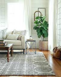 rug size for home decorating ideas best of magnolia by how big is a 4x6 long