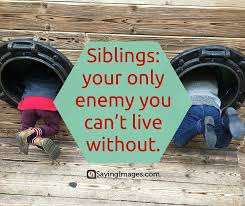 Sibling Love Quotes Beauteous 48 Sweet And Loving Siblings Quotes SayingImages