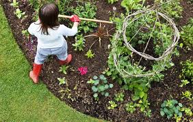 Small Picture The Secrets to Growing a High Yield Vegetable Garden Rodales