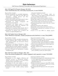Sap Delivery Manager Sample Resume Professional Resume Templates