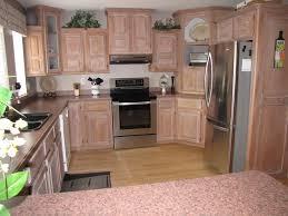 Under Kitchen Sink Cabinet Organize Everything Under The Kitchen Sink Clean And Scentsible