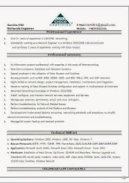 Examples Of Cv Profile Sample Template Example Ofexcellent