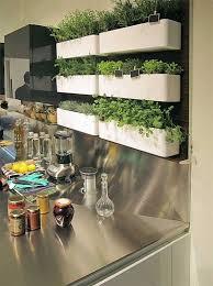 Vertical Herb Garden in the kitchen. Grow your own damn tomatoes. The how-