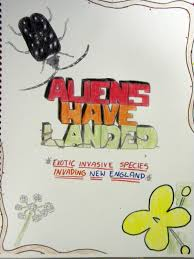 fall brook elementary students write book about invasive species