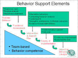 Components Of Functional Behavior Assessments And | Essay Writing ...