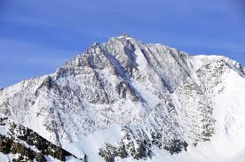 Monte Shinn