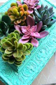 succulent wall decor succulent wall decor vertical succulents garden on lovely design ideas table succulent decor succulent wall decor