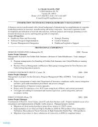 Case Manager Resume Examples Resume
