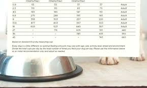 Wellness Core Puppy Feeding Chart Wellness Core Puppy Food Abhi Shekraj Ravi