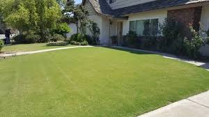 Budget Lawn Care Jimmys Budget Lawn Care Nurseries Gardening