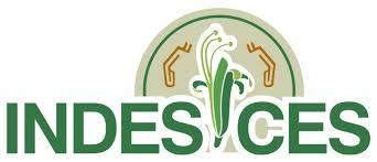 Logo INDES-CES