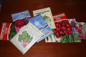 Kitchen Garden Seeds How To Time Planting Vegetable Seeds For A Kitchen Garden