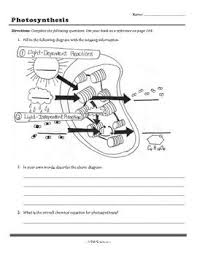 Photosynthesis Chart Worksheet Photosynthesis Worksheet Photosynthesis Worksheet