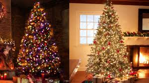 Christmas Tree With White And Multicolor Lights Watch Why The Real Debate At Christmas Is White Vs Multi