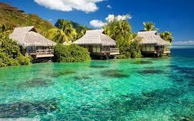 tropical landscape desktop backgrounds. Photography Landscape Nature Water Sea Tropical Plants HD Wallpaper Desktop To Backgrounds