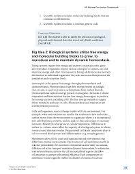 international business essays examples topics edu essay international business research paper topics 2190532