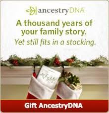 a thousand years of your family story yet still fits in a stocking give the gift of ancestrydna this year