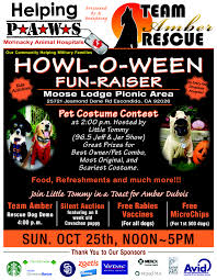 helping paws howl o ween fundraiser helping paws mohnacky fundraiser flyer final