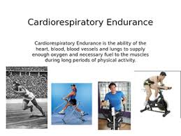 5 Components Of Fitness Powerpoint Slides For Presentation Or Poster