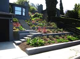 Small Picture front yard succulent landscaping Landscape Succulent Drought