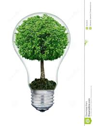 Light Bulb With Tree Inside The Tree Inside Of The Light Bulb Isolated On White Stock