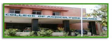 Colleges Of Agriculture Swami Keshwanand Rajasthan Agricultural University Bikaner