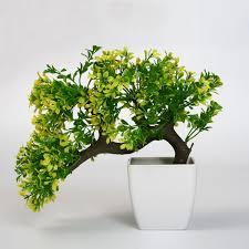 Vaso per bonsai plastica prezzi: da esterno attrezzi e vasi per