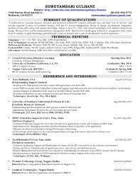 Gis Resume Sample Sample Resume Gis Gis Technician Resume Best